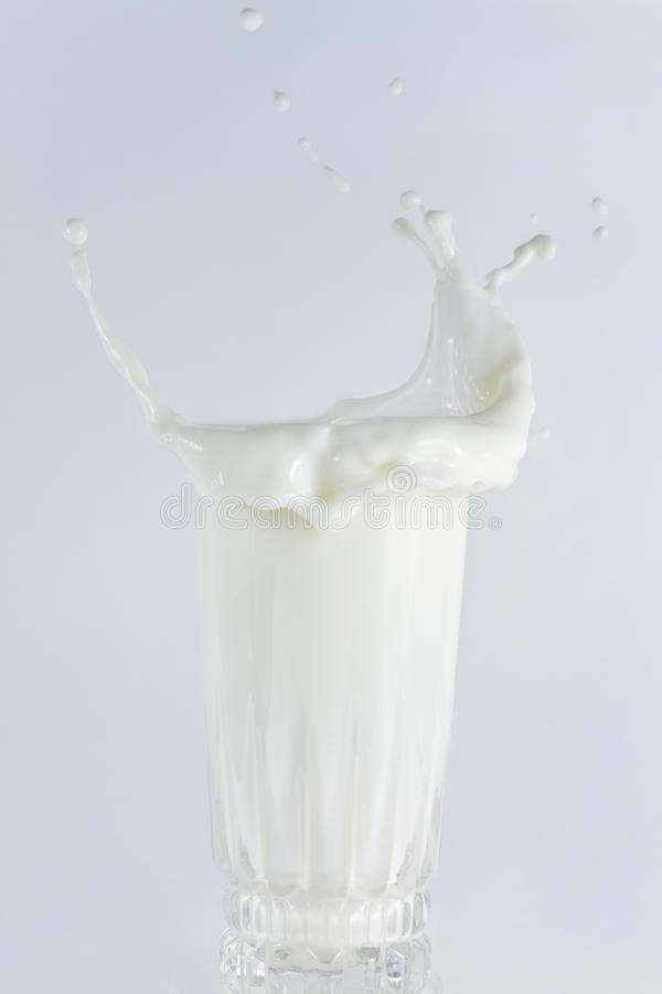 Free Milk Splash Royalty Free Stock Photo - 9868765