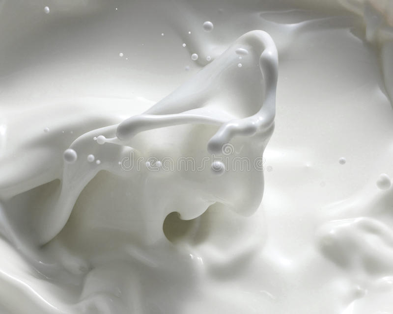 Milk Splashing Stock Photography Image 13058942