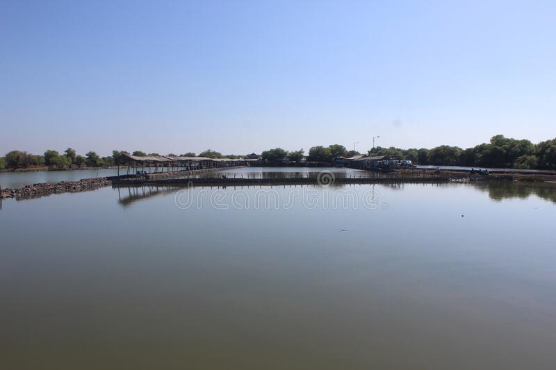 Milkfish fishing pond, in the East Java district of Sidoarjo, Indonesia. Country stock photos
