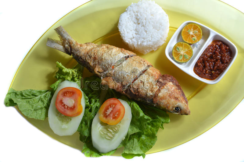 Download Milkfish fry stock photo. Image of health, chili, lunch - 34445742