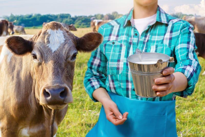 картинки коровы с доярками