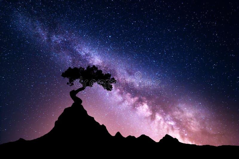 Milky sposób i drzewo na górze obrazy royalty free