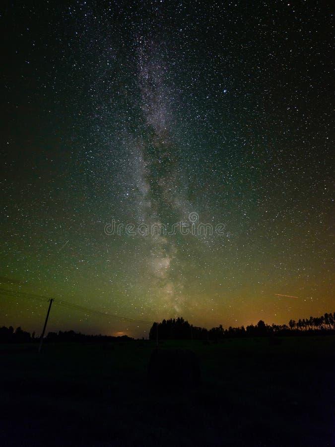 Milky sposób w nocnym niebie z gwiazdami i niektóre drzewami fotografia stock