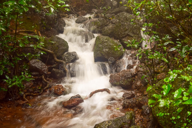 Milky waterfall on a small stream in Matheran hill station nestled in Sahyadri range of western ghat in Maharashtra. Matheran is a hill station nestled in royalty free stock photography