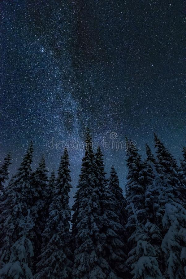 Milky way in cold winter night landscape royalty free stock images
