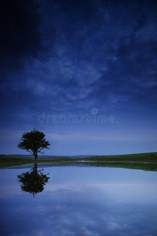 Milky Way galaxy image of night sky with natural tree silhouette royalty free stock images