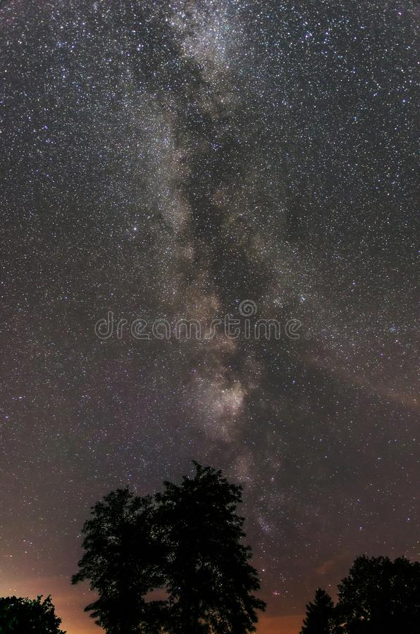 Milky way galaxy over a tree. Beautiful starry band of the Milky Way galaxy seemingly growing over a tree silhouette stock photos