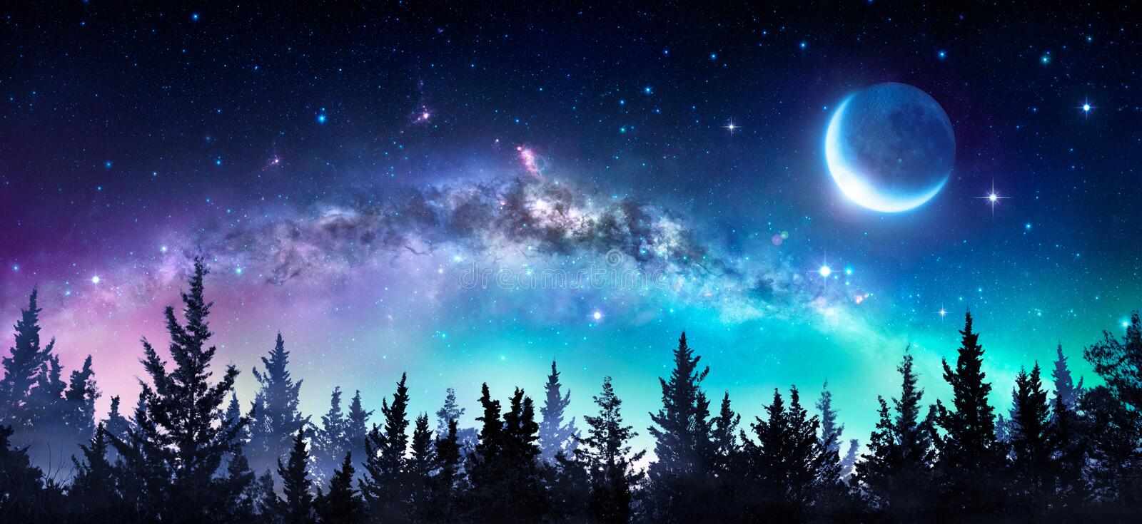 Milky Way And Moon. In Night Forest stock images