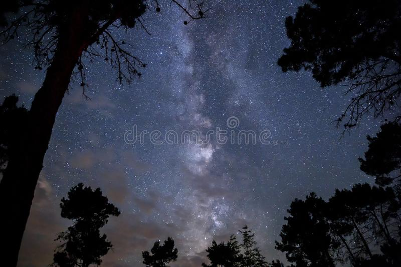 Milky Way in the night sky over the forest stock images