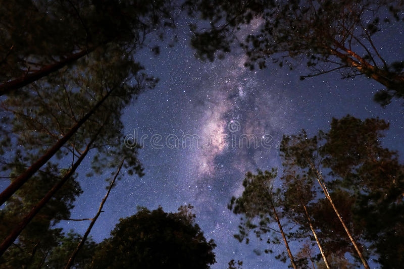 Milkyway obraz stock