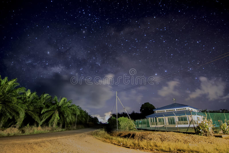 The MilkyWay. A light polution from street lights on my back, lucky enough to capture the Milkyway at 2am from Oil Palm estate road. The foreground is an Oil royalty free stock images