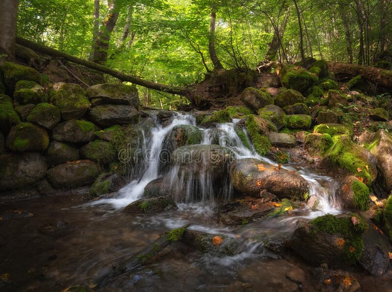 Mill Stream, Surroundings Of Ancient City Izborsk, Pskov Region, Russia.Beautiful Forest Creek In The Shade Of Green Trees. Landma royalty free stock photos