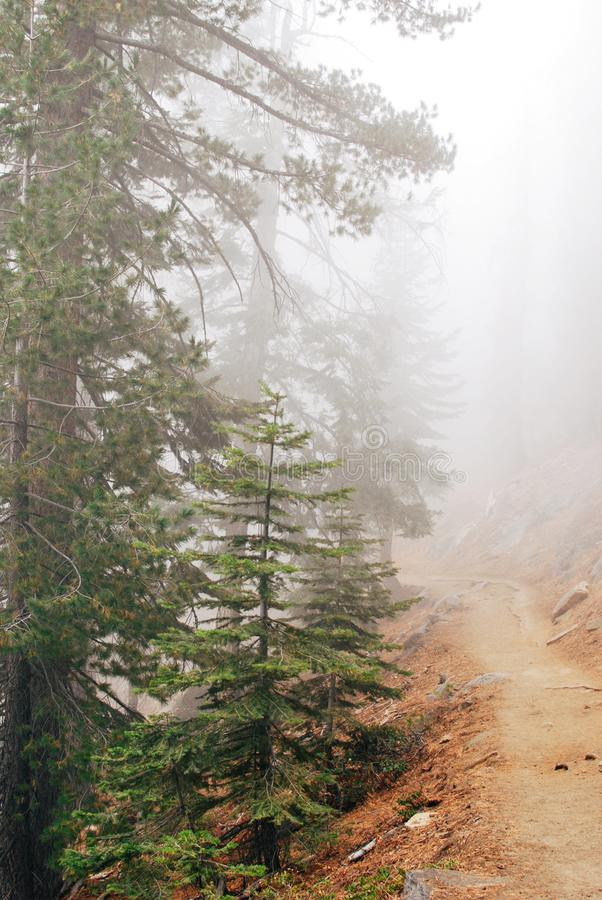4 millas de rastro en el parque nacional de Yosemite fotografía de archivo libre de regalías