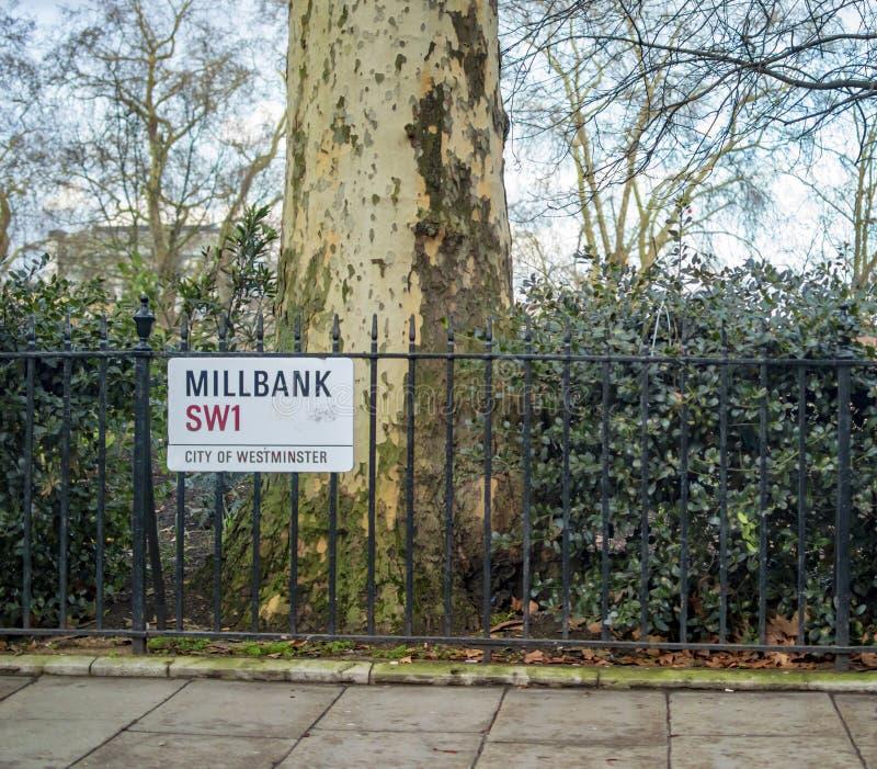 Millbank London i stary drzewo na stronach zdjęcie royalty free