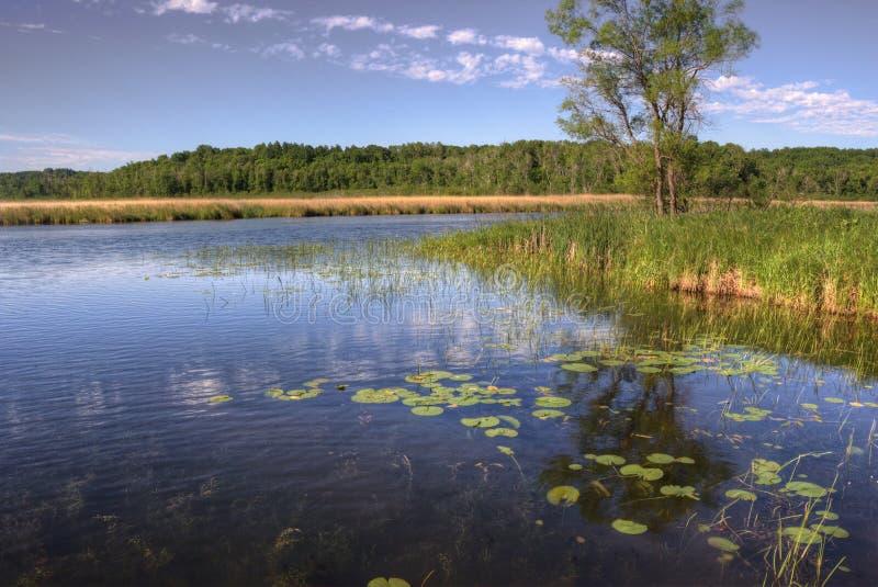 Mille紫胶Kathio国家公园Mille Lacs湖位于没有 免版税图库摄影