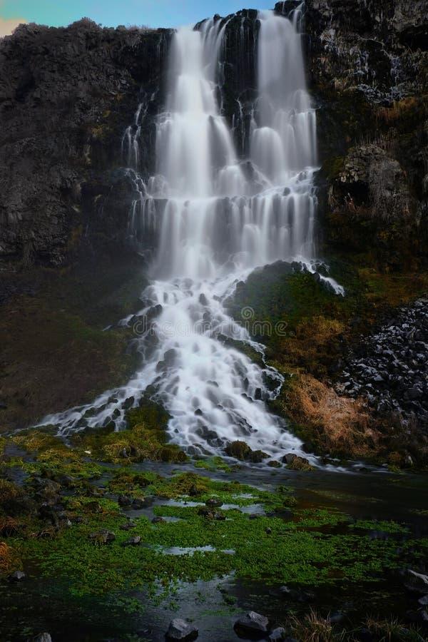 Mille cascate delle primavere nell'alba in primavera immagini stock