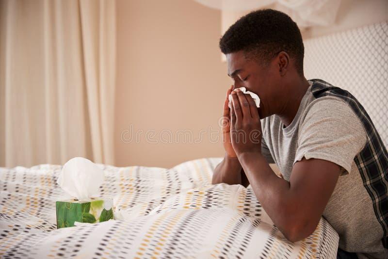 Millennial Afrikaanse Amerikaanse mens die omhoog in bed blazende neus zitten, zijaanzicht, sluit omhoog royalty-vrije stock fotografie