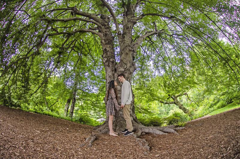 Millennial par vänder mot - - vänder mot under ett stort träd arkivfoton