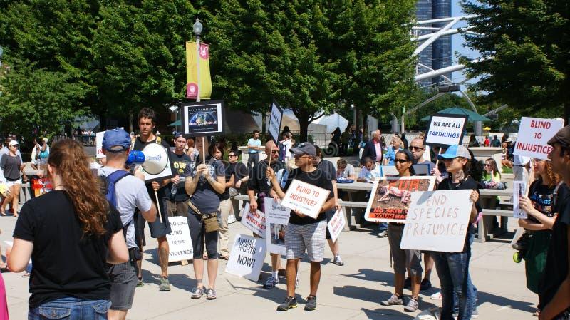 Millennium Park διαμαρτυρίας δικαιωμάτων των ζώων στοκ εικόνα