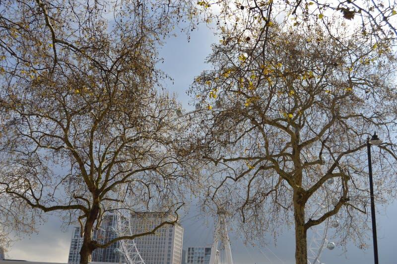 Millenniumwiel in Londen tijdens de Lente stock foto