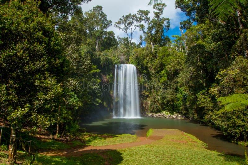 Miller Millaa Falls royalty-vrije stock fotografie