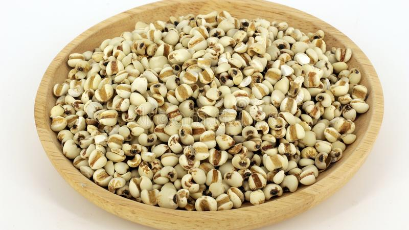 Millet rice , millet grains royalty free stock images