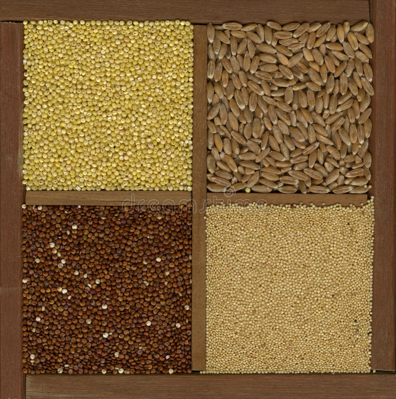 Millet. spelt, amaranth, quinoa grains royalty free stock photography