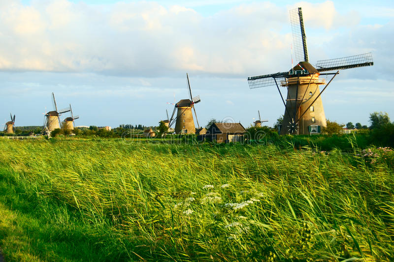 Download MILLS IN A DUTCH LANDSCAPE stock image. Image of field - 13375699