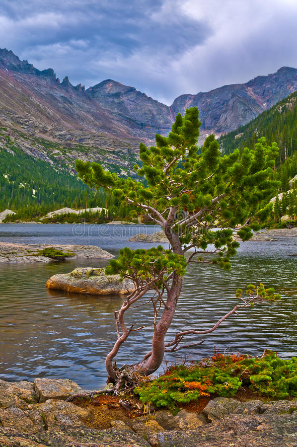 Mills Lake Colorado. Early Morning with dramatic stormy sky at the Mills Lake - Rocky Mountains National stock photo