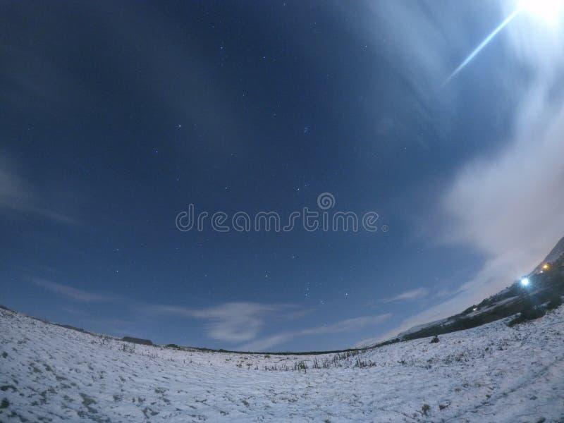 Milou, hiver étoilé en Angleterre photos libres de droits