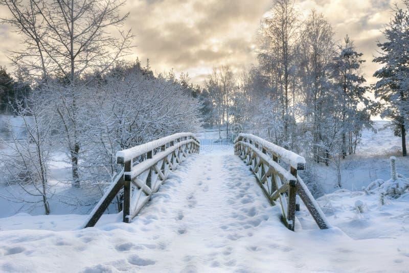 Milou peu de pont 2 photo libre de droits