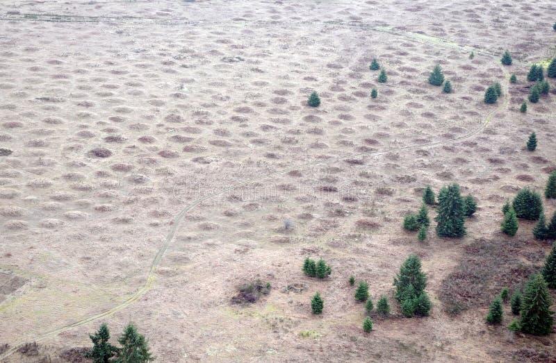 Mima Mounds royaltyfri fotografi