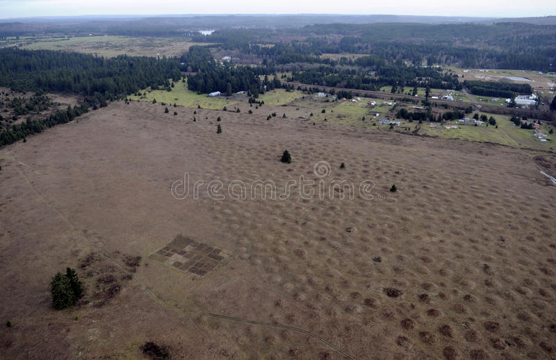 Mima Mounds arkivfoton