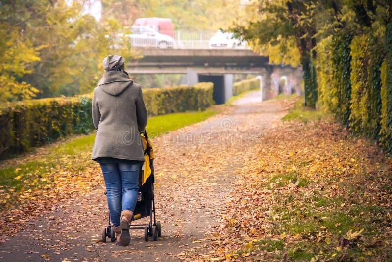 Mime al otoño alineado árbol del parque de la ciudad de la avenida de la parte posterior del cochecito del paseo imágenes de archivo libres de regalías