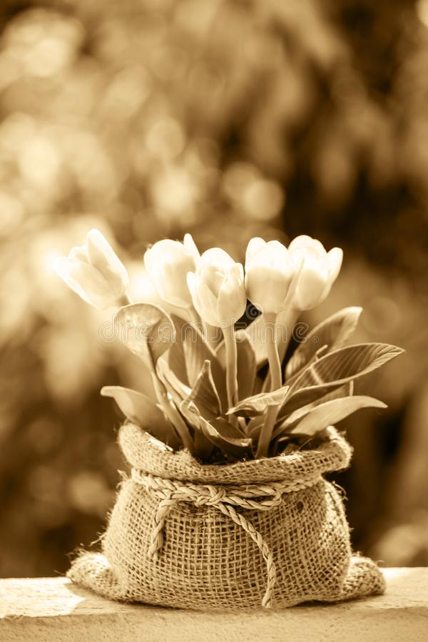 Mimic flower imitation. Fake flowers made from Japanese soil and Thai soil, taking the old color image stock image