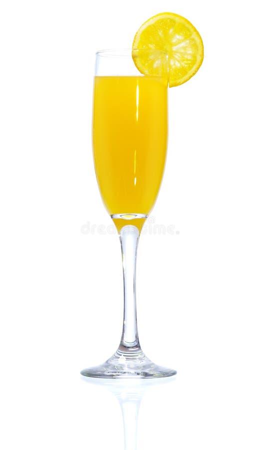 mimosa стоковая фотография