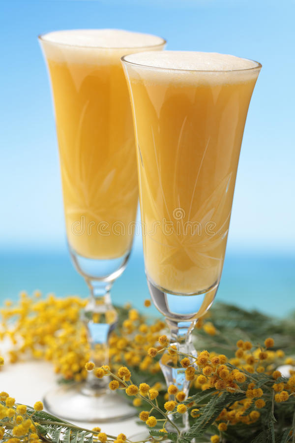 Mimosa cocktail. Two glasses of mimosa cocktail against bunch of flowers royalty free stock photos