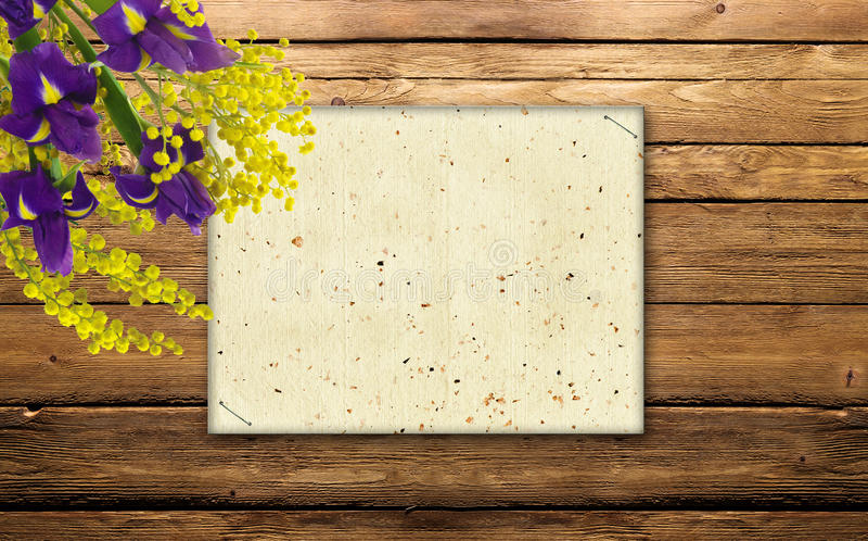 Mimosa e iris en la madera imágenes de archivo libres de regalías