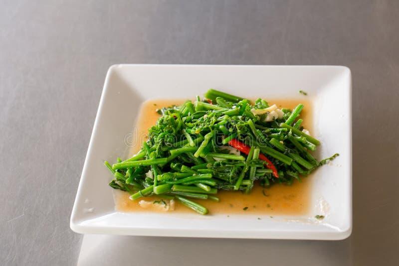 Mimosa fritada agitação da água com Chillis Alimento chinês no estilo tailandês Alimento famoso tailandês da rua foto de stock royalty free