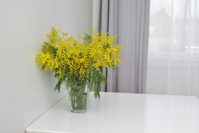 mimosa in glass vase royalty free stock photography