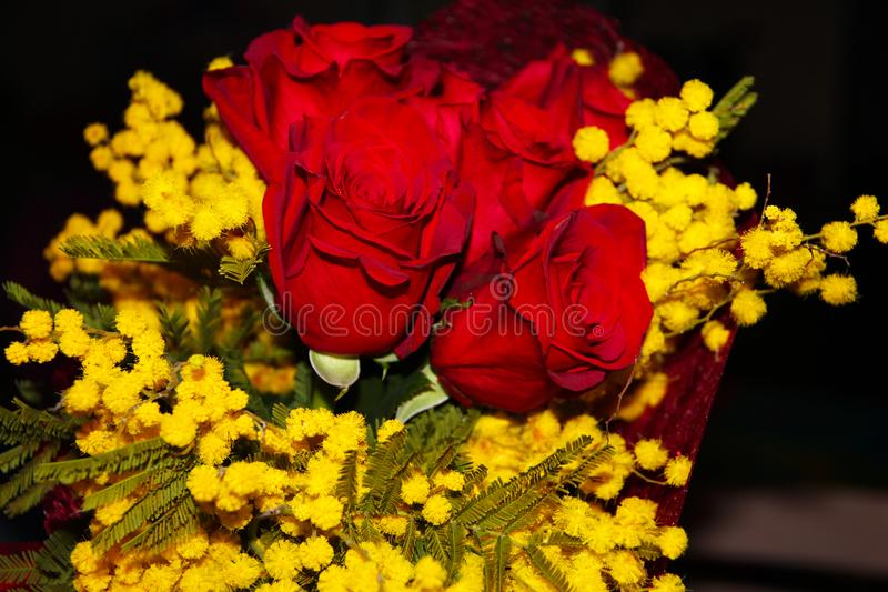 Mimosa and red roses. For woman`s day royalty free stock photos