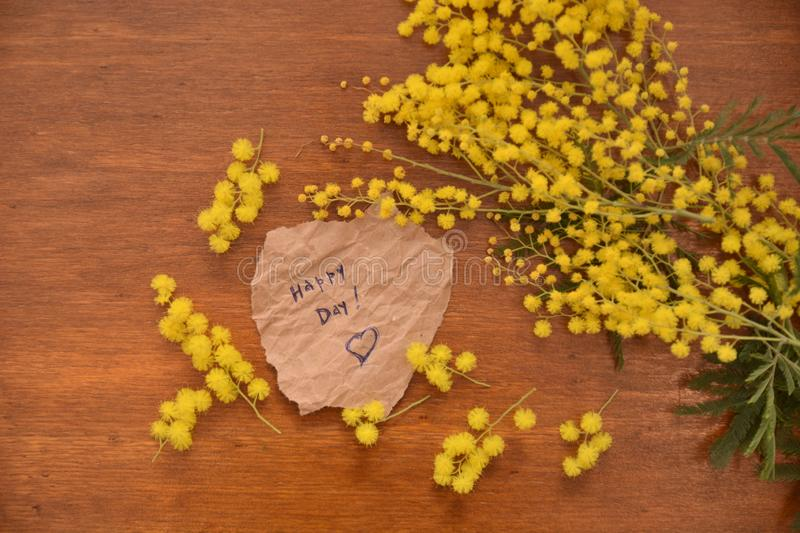 Mimosa yellow flower woman day 8th march nature on wood table. Mimosa yellow flower woman day 8th march nature wood table garden spring green leaf stock photo
