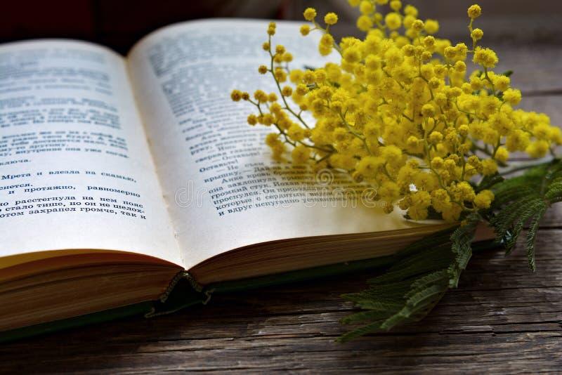 Mimosabloemen op interessant boek royalty-vrije stock fotografie