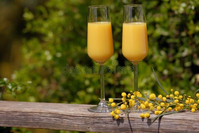Mimosacoctail royaltyfria bilder