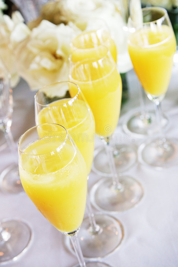 Mimosas with flowers royalty free stock images