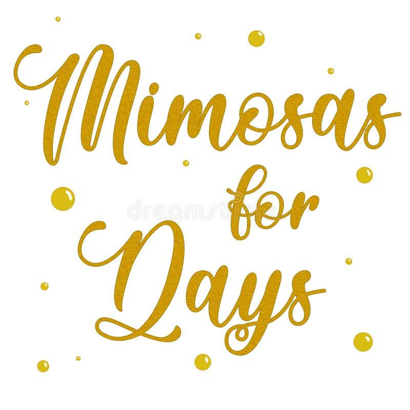 Mimosen für Tageskursivtextgold über weißem Hintergrund lizenzfreie stockfotos