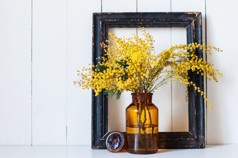 Mimosenfrühlingsblumen stockbilder