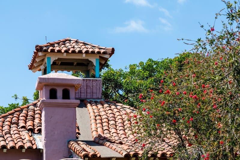 Mimozy drzewo Dachówkowym dachem obrazy stock
