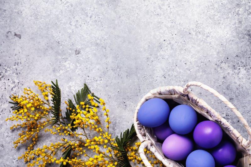 Mimozy gałąź i Easter jajka w koszu na stole z kopii przestrzenią obraz stock