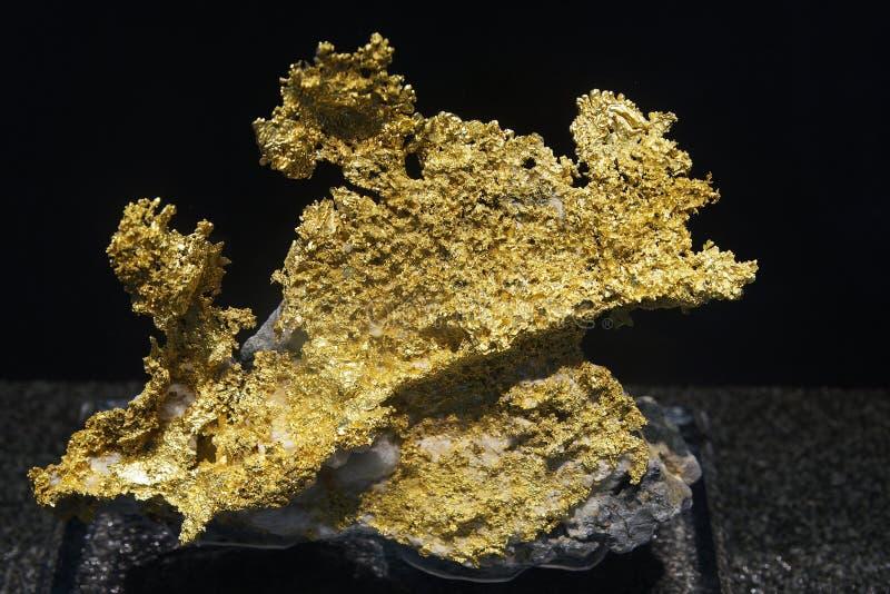 Minério do ouro fotos de stock royalty free